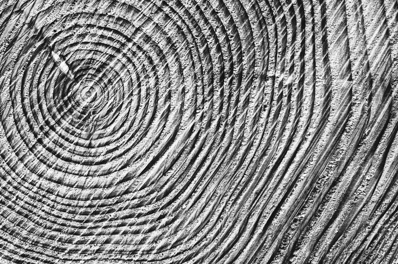 Abstract Abstract Art Abstract Photography Abstractart Chainsaw Close-up Concentric Cut Lines Lines And Shapes Lines, Shapes And Curves No People Outdoors Rings Texture Textured  Textures Textures And Surfaces Time Tree Tree Ring Tree Trunk