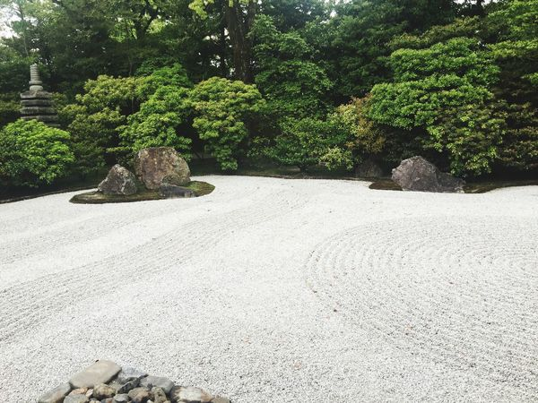 Garden Check This Out Hello World 建仁寺 Kyoto