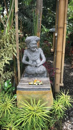Day Green Color Human Representation Nature Plant Sculpture Statue Tree