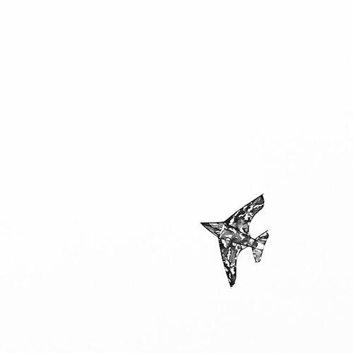 • بی هیچ مسافری در دست پسرکی شاید با پاهایی برهنه بر ساحل گرم جنوب Sky Fly Flight Minimalism Minimalha Minimalism_world Mnm_gram Loves_minimal Rsa_minimal Gradientnation Minimal Tagifminimal Minimalplanet Minimalistics Minimalobsession Minimalism Minimalisbd Minimalhunter Minimalninja Minimalista Minimalist Minimalismo Minimalistic Lessismore Simpleandpure simplicity simple مینیمال_هایی_برای_زندگی
