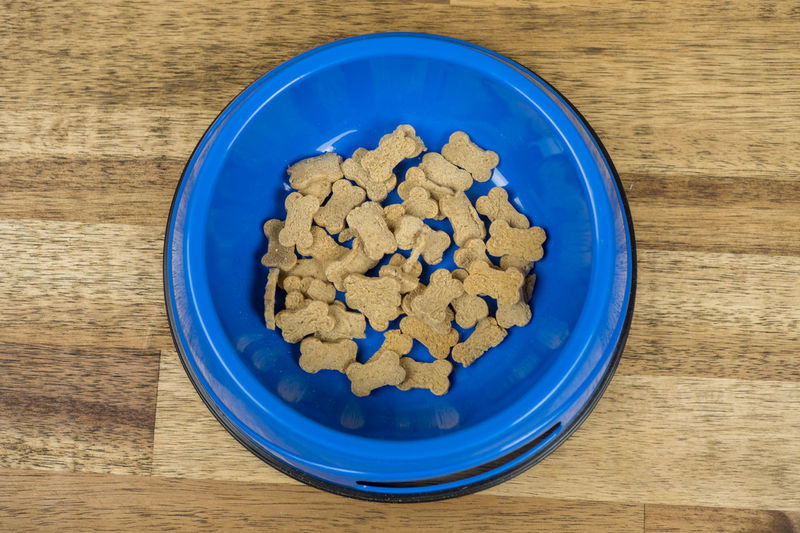 Cakes Dog Bowl Dog Food Treats Animal Food Blue Bowl Close-up Day Directly Above Dog Biscuits Dog Feeding Dog Feeding Food Food And Drink Freshness Heap High Angle View Indoors  No People Table