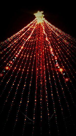 Happy Christmas Christmas Lights Merry Christmas! Christmas Tree