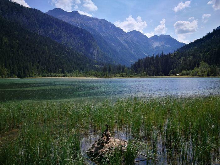 Jägersee in