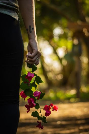 Midsection of woman with pink flowering plants