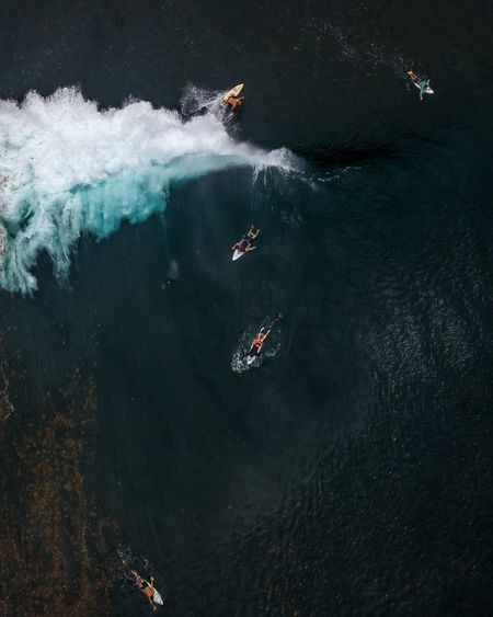 surf mayhem Surf Dji Dronephotography Cliff Sky UnderSea Water Swimming Nautical Vessel Underwater High Angle View Lake Humpback Whale Seagull Water Bird