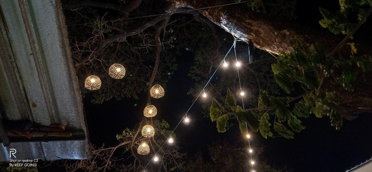 LOW ANGLE VIEW OF ILLUMINATED LIGHTING HANGING ON TREE