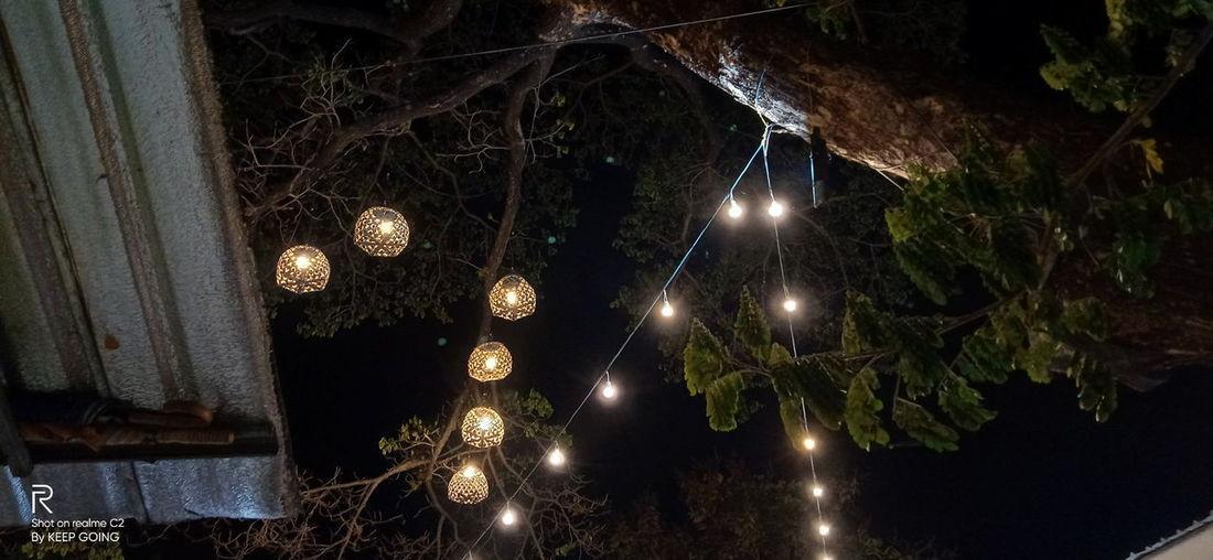 Low angle view of illuminated lighting equipment hanging on tree