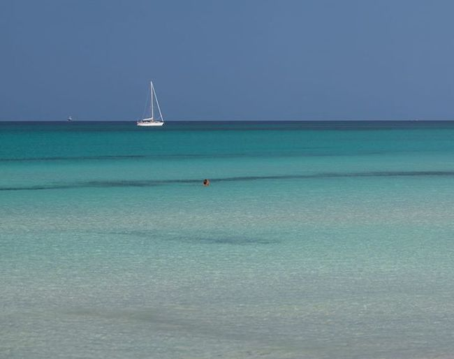Have A Nice Day♥ My Eye Em Friends From Caribbeac.
