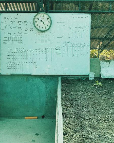 Day No People Green Hydroculture Clock Plants Wall White Board Work Light Soil Fresh On Eyeem