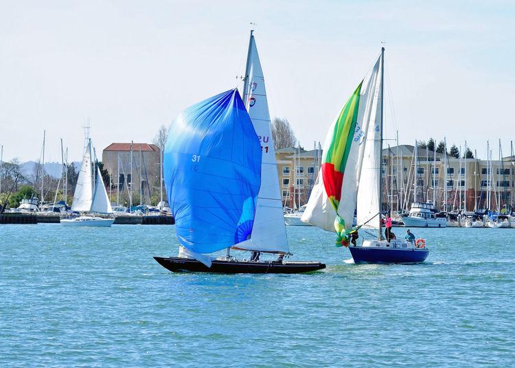 Sailboats Racing @ Embarcadero Cove 3 Action Sports Pastel Power Sailboats Tacking Colorful Sails