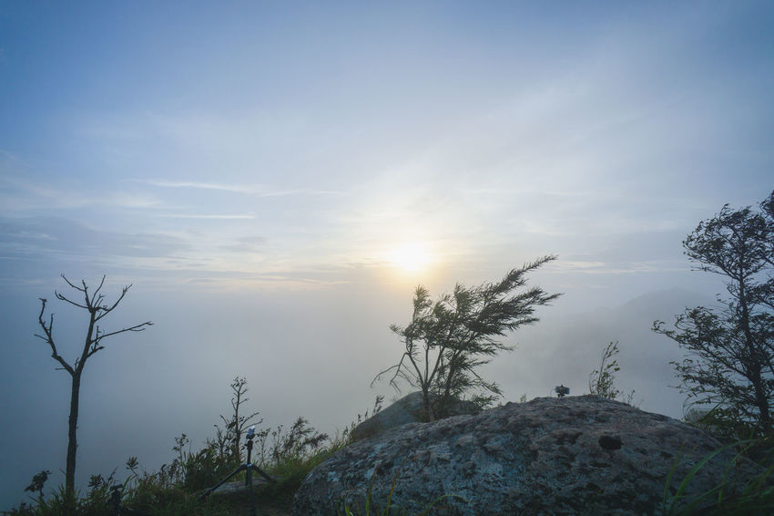 Beauty In Nature Cloud - Sky Day Lens Flare Low Angle View Mountain Nature No People Non-urban Scene Outdoors Plant Rock Rock - Object Scenics - Nature Sky Solid Sun Sunlight Tranquil Scene Tranquility Tree