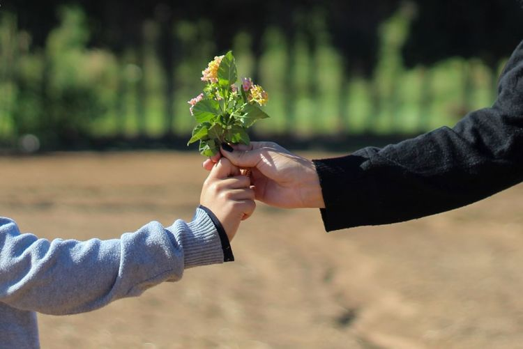 Cropped hand of couple holding flowers