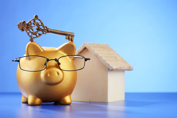 saving for your future Key Of Success Bring Home The Bacon Business Coin Box Copy Space Piggy Bank Animal Representation Blue Blue Background Coin Bank Colored Background Copy Space Debt Eyeglasses  Finance Home Finances Indoors  Indoors  Investment Key Model House No People Savings Studio Shot Wealth