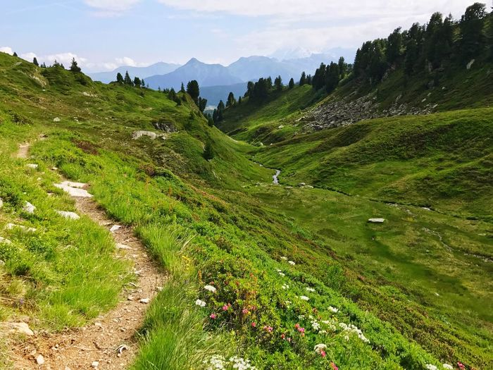 Path Hiking Trail France Alps Mountain Green Color Field Beauty In Nature Nature Landscape Outdoors Scenics No People Rural Scene Cloud - Sky Mountain Range Tranquility Day