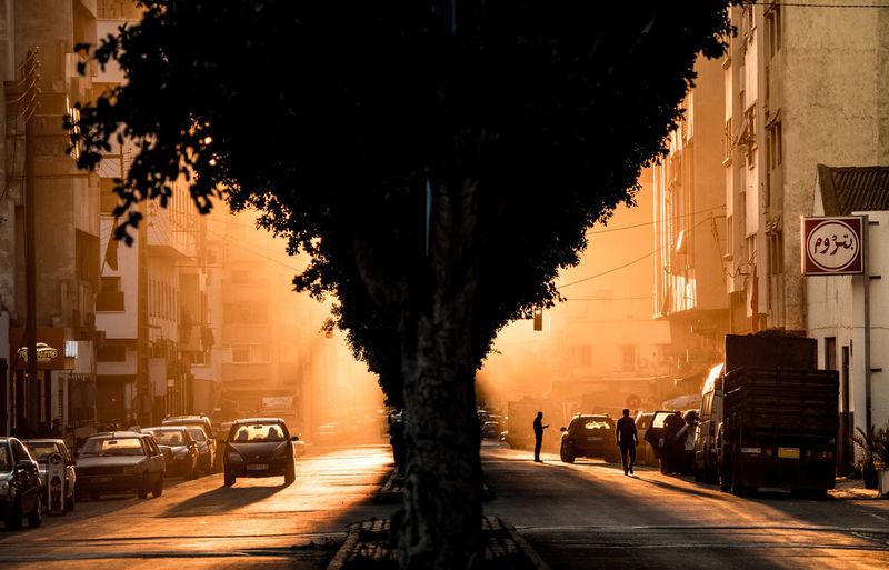 Casablanca sunset Casablanca EyeEmNewHere Morocco Olympus Silhouette Sunset Silhouettes The Traveler - 2018 EyeEm Awards Travel City Life First Eyeem Photo Illuminated Land Vehicle Outdoors Street Streetphotography Sunset Treelined First Eyeem Photo The Street Photographer - 2018 EyeEm Awards
