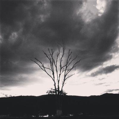 """""""...Os dias sem você aqui, são tão cinzas."""""""