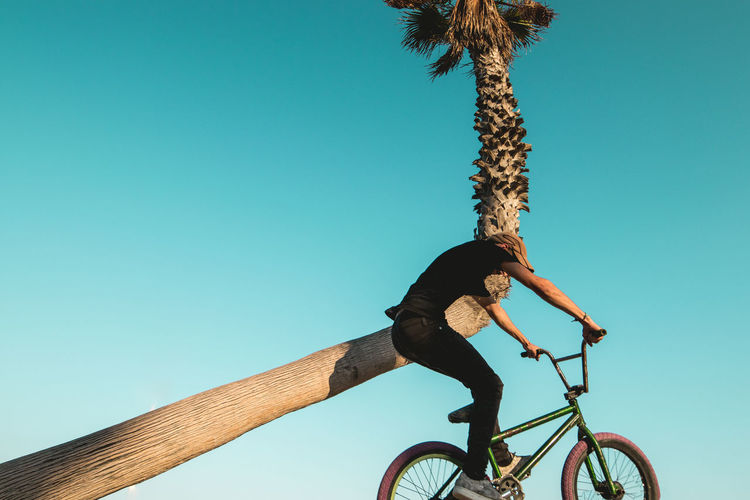 Low angle view of bicycle against trees against clear blue sky