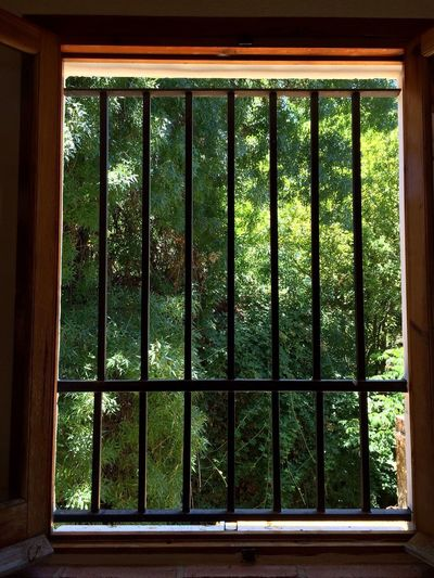 Ventana natural / Natural Window