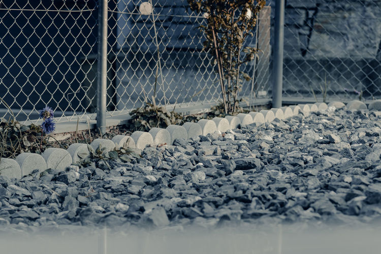 Close-up of snow covered chainlink fence
