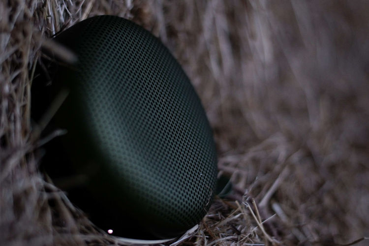 Close-up No People Indoors  Day Speaker BangOlufsen BeoPlay A1 Green Nature Hay Barn Farm Music