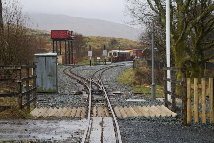 Railroad Track Tree Rail Transportation Train - Vehicle Public Transportation Sky Shunting Yard Railroad Crossing