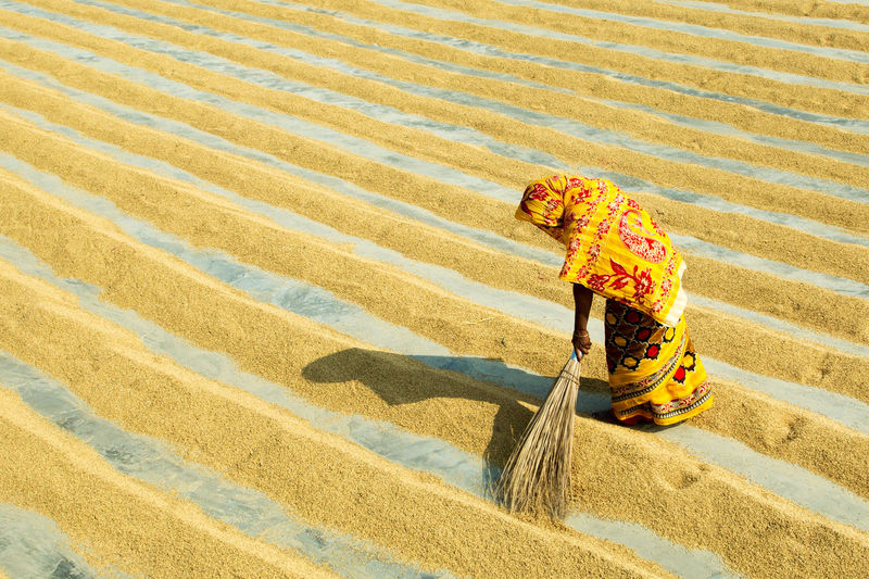 RICE MILL Paddy Rice Paddy Rice Mill Working Manual Worker Occupation Sand Men Pattern Sand Dune Full Length Sweeping Broom Terraced Field