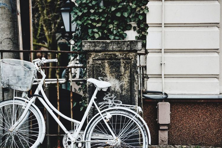 Like someone just forgot their bike forever. White Bicycle Bicycle Urban Urban Design Abandoned Objects Streets Streetart Decor