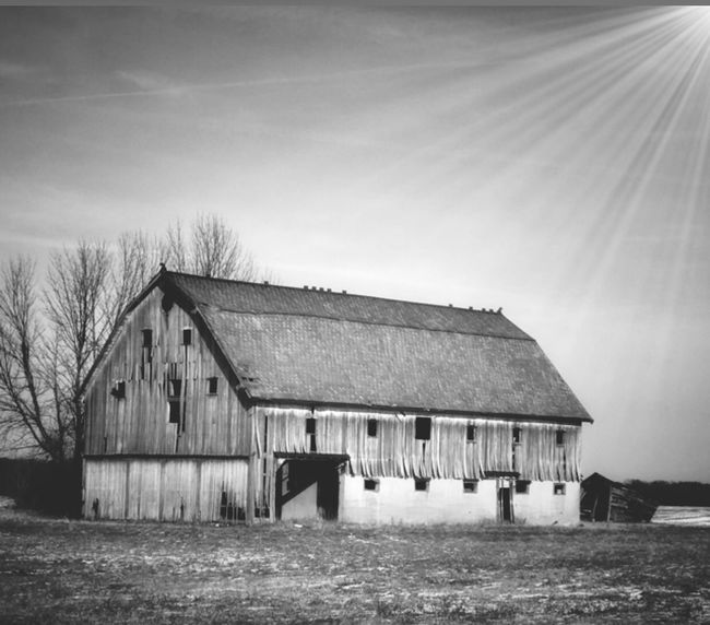 Black & White Architecture Built Structure Building Exterior No People Sky Day Outdoors Tree Barn Clear Sky