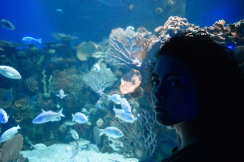Breathing Space Indoors  Portrait Of A Woman Aquarium Fish Water Aquarium Life Girl