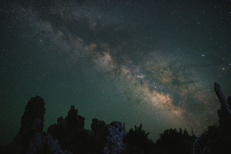 Star - Space Night Astronomy Sky Galaxy Milky Way Nature Space Tree Tranquility Beauty In Nature Scenics Outdoors Silhouette Tranquil Scene No People Low Angle View Constellation The Great Outdoors - 2017 EyeEm Awards