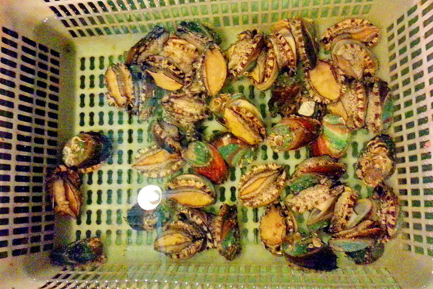 Clams Cooking Dinner Dinner With Friends Eating Good Food Preparation Food Presentation Foods Restaurants Seafoods