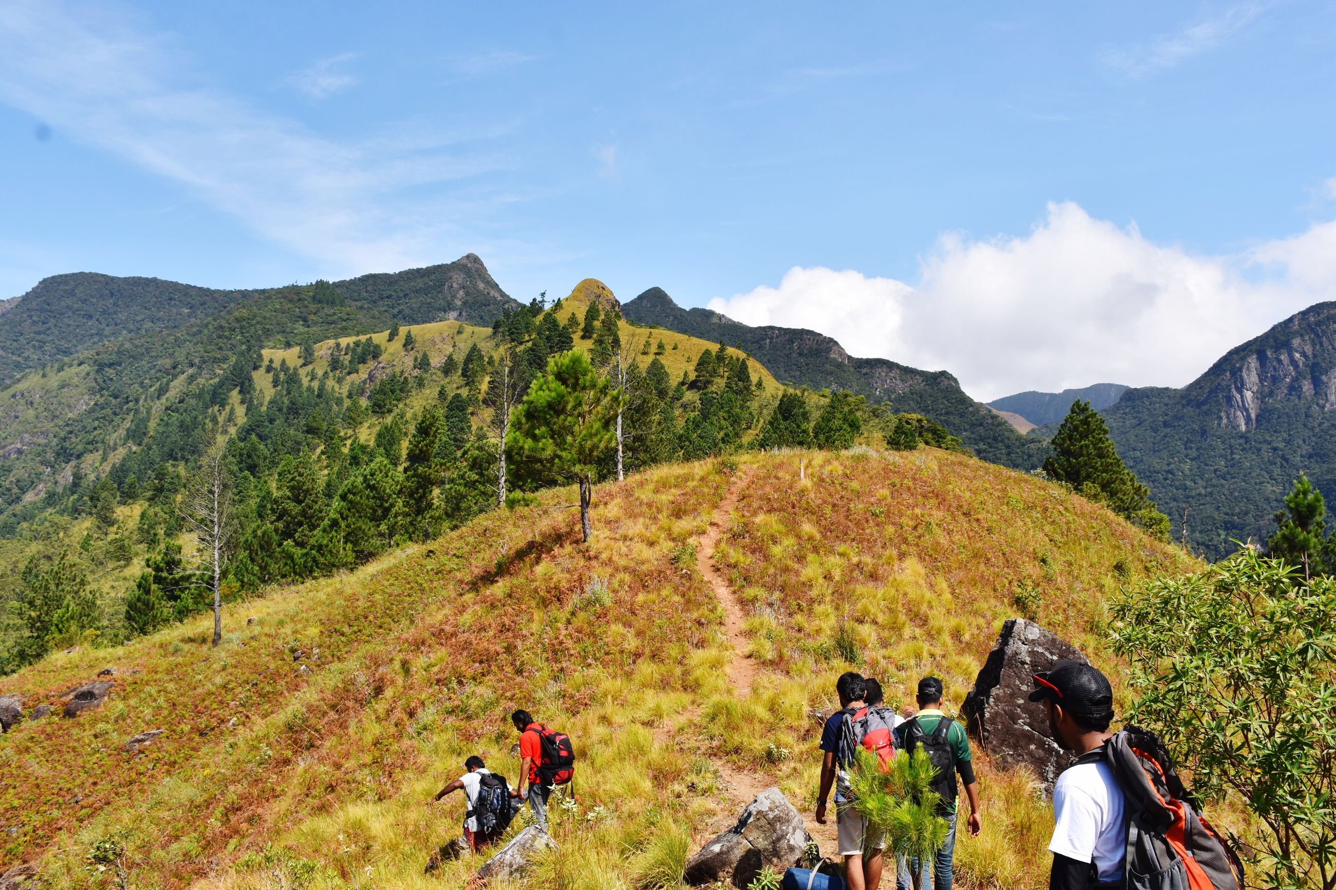 mountain, real people, adventure, nature, hiking, leisure activity, backpack, scenics, beauty in nature, sky, men, mountain range, rear view, hiker, exploration, day, medium group of people, tranquil scene, lifestyles, tranquility, women, landscape, outdoors, tree, healthy lifestyle, road, togetherness, grass, friendship, mammal, people