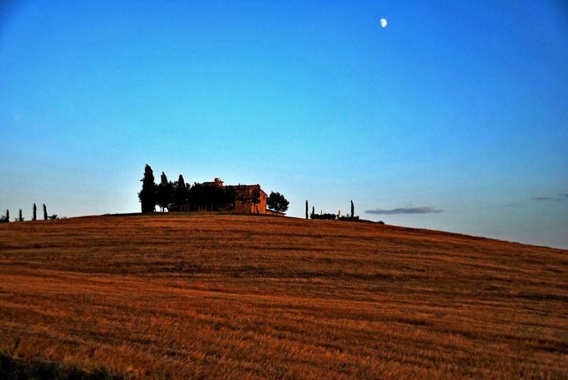 Montalcino. Beauty In Nature Blue Clear Sky Day Field Landscape Nature No People Outdoors Rural Scene Scenics Sky
