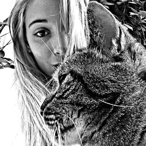 Moitié ~ moitié. Bnw_photography B_w Bw_shotz Bw_instagram bw bws_worldwide bnw_girls bnw_captures bnw_wonderful bnw_capture bnw bestshooter tagsforlikes webstagram tribegram animal_captures animal cat catoftheday love girl bestoftheday jj_halfface photoofday photodujour