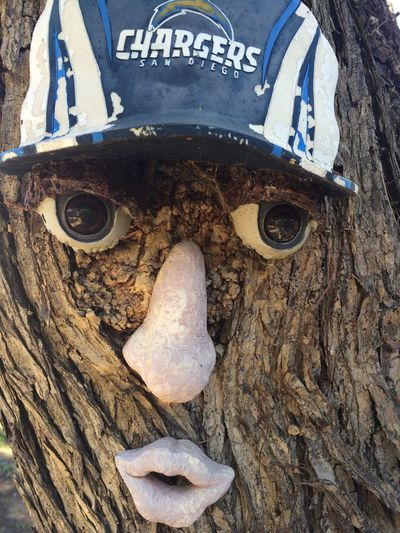 Chargers  SD Chargers Go Chargers Sports funny Face In Tree Treefaces Treeface Fan Fans Sports Team Team Football Football Team