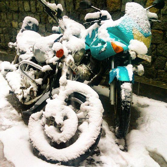 Snowbikes Manali Snow Bikes Kullu Snowfall Heavysnowfall Avenger Karizma Ankitdogra