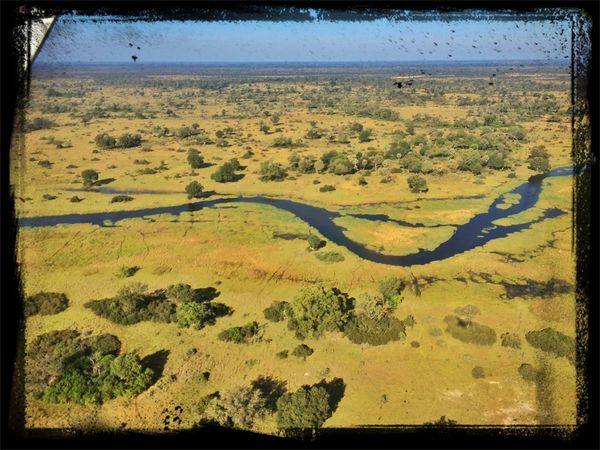 Scenic Fly Okavango Delta Great Views Nambw2014