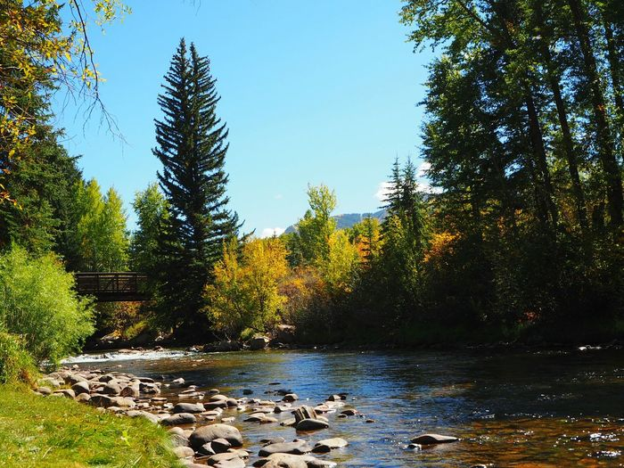 Day for bike riding Aspen, Colorado Rocky Mountains Bike Water River Vacation