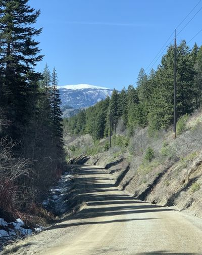 Dirt road amidst trees and mountains against sky