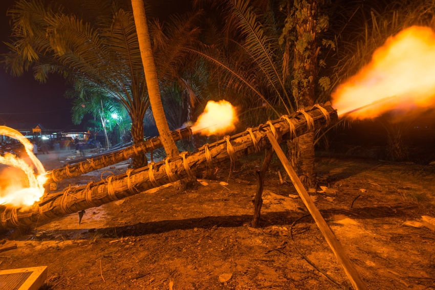 Traditional cannon made from coconut tree. The event is normally held during Eid-Mubarak celebration. Blast Cannon Celebration Coconut Tree Eid Mubarak Fire Hapiness Heritage Rural Scene Tradition Under Control