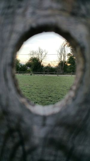 Looking Through Knot In Fence Clear Picture Looking Out Trees Sun Setting wood