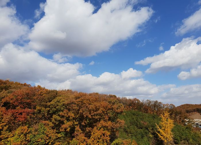 musim gugur