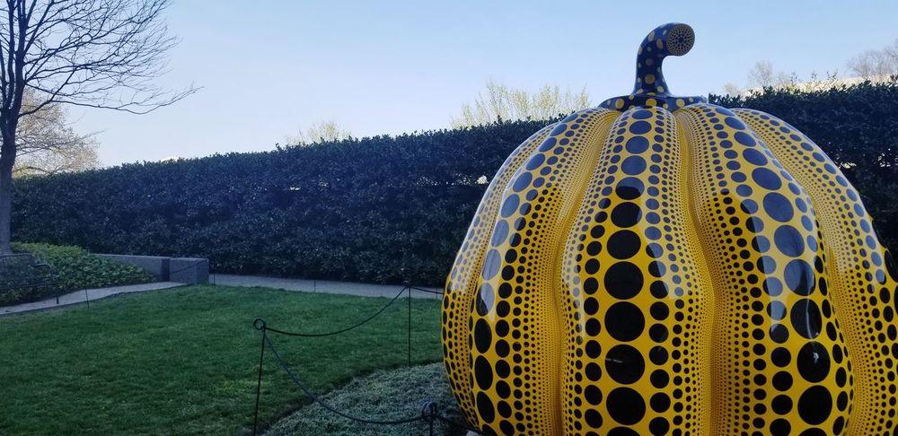 Art of art. Modern Art Hirshhorn  Washington, D. C. Pumpkin EyeEm Selects Water Tree Sky Sculpted Art Statue Sculpture ArtWork Golden Color