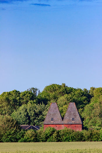 Oast Houses, Garden of England, Kent,England. Plant Tree No People Nature Land Architecture Rural Scene Countryside Farm Hops Beer Drying Process Icons Iconic Buildings Sunset Vivid International Getty Images EyeEm Gallery Sky Growth Copy Space Day Clear Sky Green Color Tranquility Blue Tranquil Scene Beauty In Nature Scenics - Nature Landscape Built Structure Field Outdoors