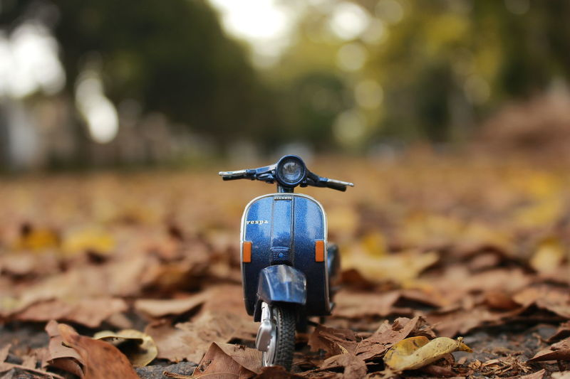 Vespa PX 150 Leaf Autumn Protection Outdoors Close-up Day Forest Tree Nature Miniature Vespa Vespavintage Vespa Indonesia Vespapx Vespalovers Vespamaniac Vespaitaly No People 50mm F1.8 Canonphotography Piaggio Piaggio Vespa Vespajakarta