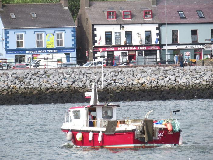 Dingle harbour
