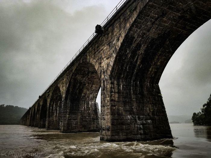 Profound bridge
