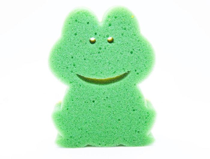 Frog sponge