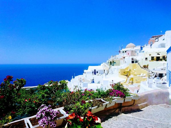Sea Flower Vacations Santorini サントリーニ Insel GREECE ♥♥ Greece Island Sea Grichenland La Mer 青 白 海外旅行 Outdoors No People Clear Sky Nature Luxury Travel Destinations Beach Summer Day Water Horizon Over Water Blue