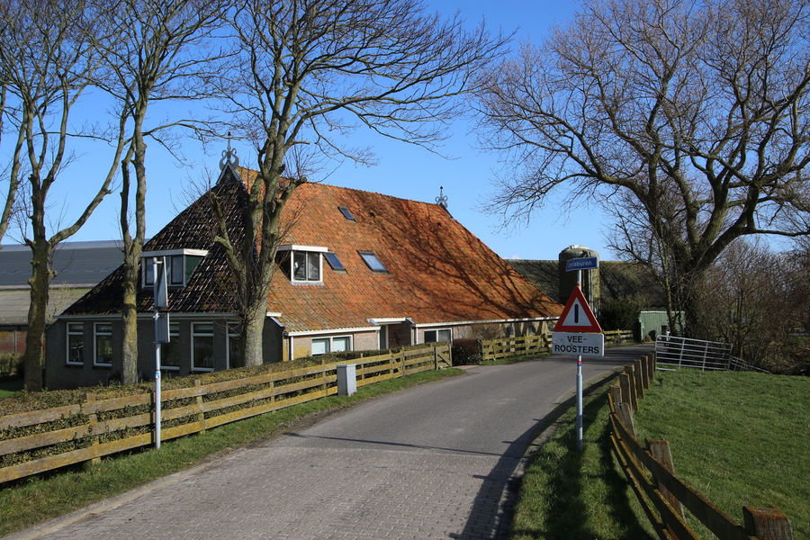 Architecture Bare Tree Blue Built Structure Day Diminishing Perspective Empty Grass Narrow No People Outdoors Residential Structure Road Sky The Way Forward Town Tree Vanishing Point Walkway Frisian FRISIAN♡ Friesland Holland Farm Gaast
